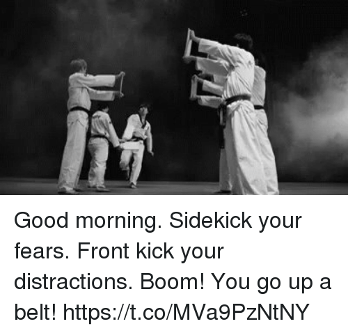 Memes, Good Morning, and Good: Good morning. Sidekick your fears. Front kick your distractions. Boom! You go up a belt! https://t.co/MVa9PzNtNY