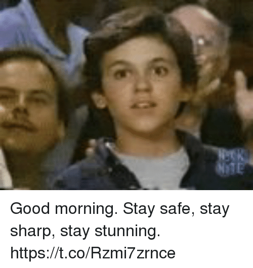 Memes, Good Morning, and Good: Good morning. Stay safe, stay sharp, stay stunning. https://t.co/Rzmi7zrnce