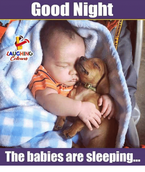Good, Sleeping, and Indianpeoplefacebook: Good Night  LAUGHING  The babies are sleeping...