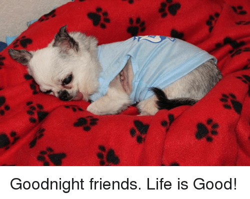 Goodnight Friends Life Is Good Friends Meme On Conservative Memes