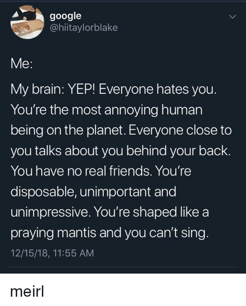 Friends, Google, and Real Friends: google  @hiitaylorblake  Me:  My brain: YEP! Everyone hates you  You're the most annoying human  being on the planet. Everyone close to  you talks about you behind your back.  You have no real friends. You're  disposable, unimportant and  unimpressive. You're shaped like a  praying mantis and you can't sing  12/15/18, 11:55 AM meirl