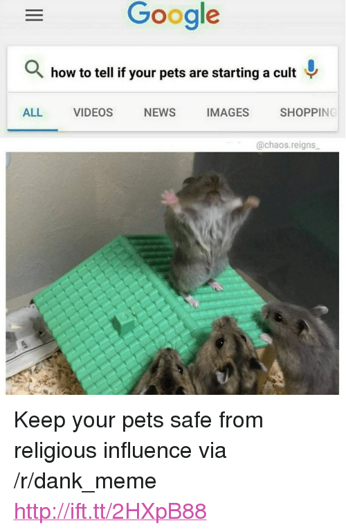 """Dank, Google, and Meme: Google  how to tell if your pets are starting a cult  ALL VIDEOS NEWS IMAGES SHOPPING  @chaos.reigns <p>Keep your pets safe from religious influence via /r/dank_meme <a href=""""http://ift.tt/2HXpB88"""">http://ift.tt/2HXpB88</a></p>"""