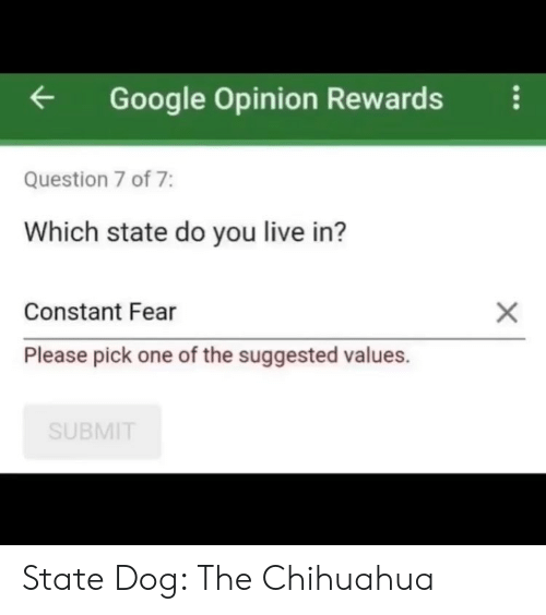 Pick One: Google Opinion Rewardsi  Question 7 of 7:  Which state do you live in?  Constant Fear  Please pick one of the suggested values.  SUBMIT State Dog: The Chihuahua