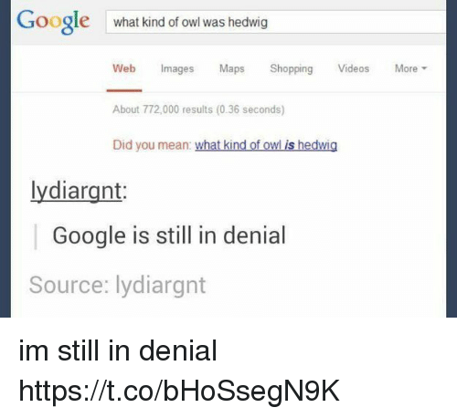 Google, Memes, and Shopping: Google  what kind of owl was hedwig  Web Images Maps Shopping Videos  About 772,000 results (0.36 seconds)  Did you mean: what kind of owl is hedwig  More ▼  lydiargnt  Google is still in denial  Source: lydiargnt im still in denial https://t.co/bHoSsegN9K