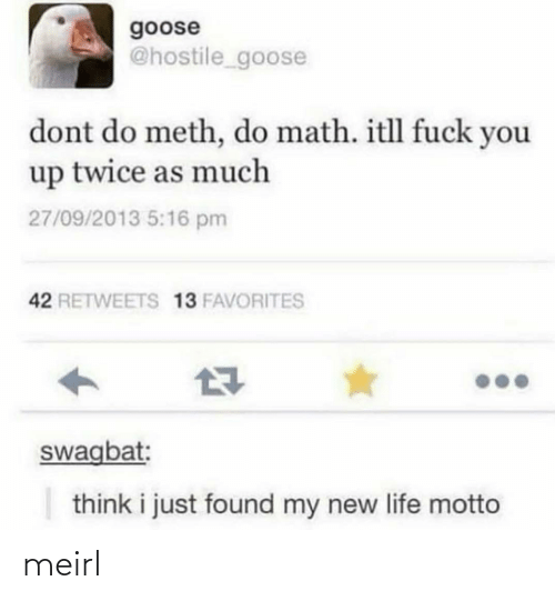Fuck You, Life, and Fuck: goose  @hostile_goose  dont do meth, do math. itll fuck you  up twice as much  27/09/2013 5:16 pm  42 RETWEETS 13 FAVORITES  swagbat:  think i just found my new life motto meirl