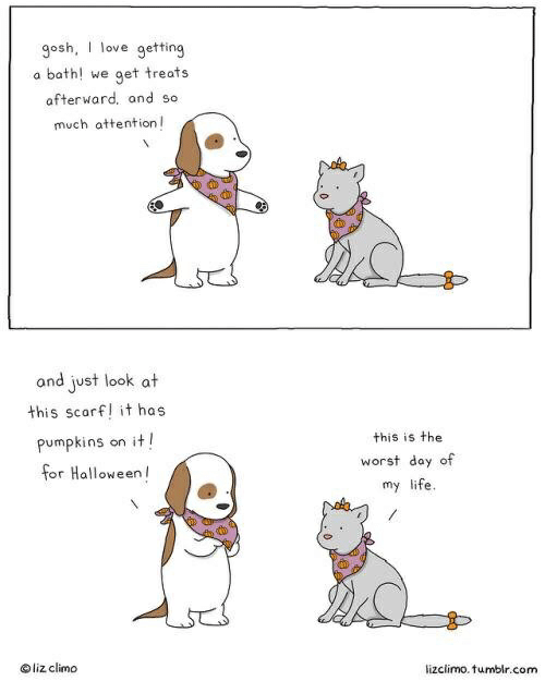 Lizclimo Tumblr: gosh, I love getting  bath! we  get treats  afterward, and so  much attention  and just look at  this scarf! it has  it!  pumpkins  this is the  on  worst day of  for Halloween  my life  Oliz climo  lizclimo. tumblr.com