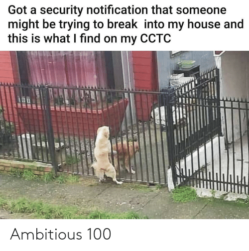 security: Got a security notification that someone  might be trying to break into my house and  this is what I find on my CCTC  UOUC R ER Ambitious 100