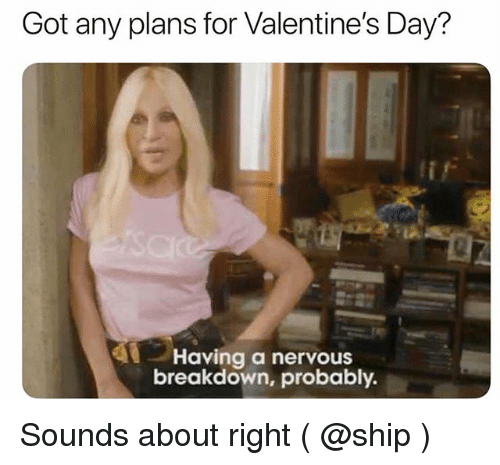 Valentine's Day, Girl Memes, and Got: Got any plans for Valentine's Day?  Having a nervous  breakdown, probably Sounds about right ( @ship )
