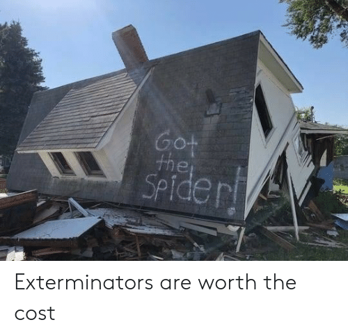 Spider, Got, and  Worth: Got  the  SPider Exterminators are worth the cost
