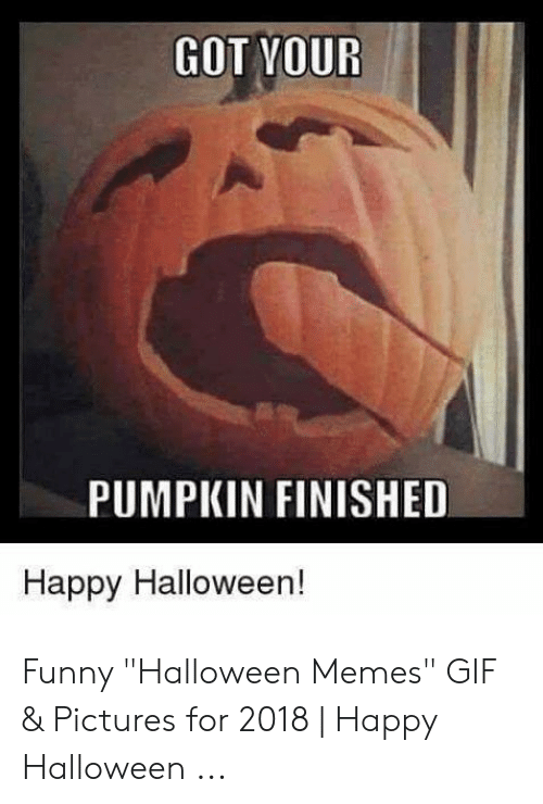 "Gif Pictures: GOT YOUR  PUMPKIN FINISHED  Happy Halloween! Funny ""Halloween Memes"" GIF & Pictures for 2018 