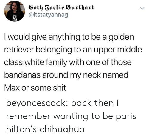 Belonging: Goth Fackie Burkhart  @itstatyannag  I would give anything to be a golden  retriever belonging to an upper middle  class white family with one of those  bandanas around my neck named  Max or some shit beyoncescock: back then i remember wanting to be paris hilton's chihuahua