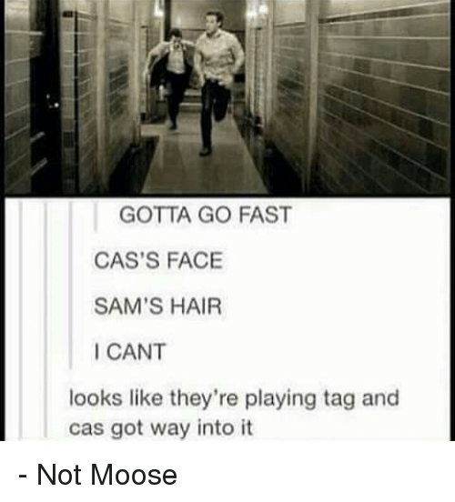 Memes, 🤖, and Moose: GOTTA GO FAST  CAS'S FACE  SAM'S HAIR  ICANT  looks like they're playing tag and  cas got way into it - Not Moose