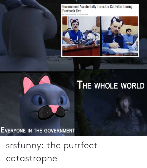 Facebook, Tumblr, and Blog: Government Accidentally Turns On Cat Filter During  Facebook Live  BY EMILY BROWN ON 17 JUN 2019 0908  @nailainayatTwiter  THE WHOLE WORLD  EVERYONE IN THE GOVERNMENT srsfunny:  the purrfect catastrophe