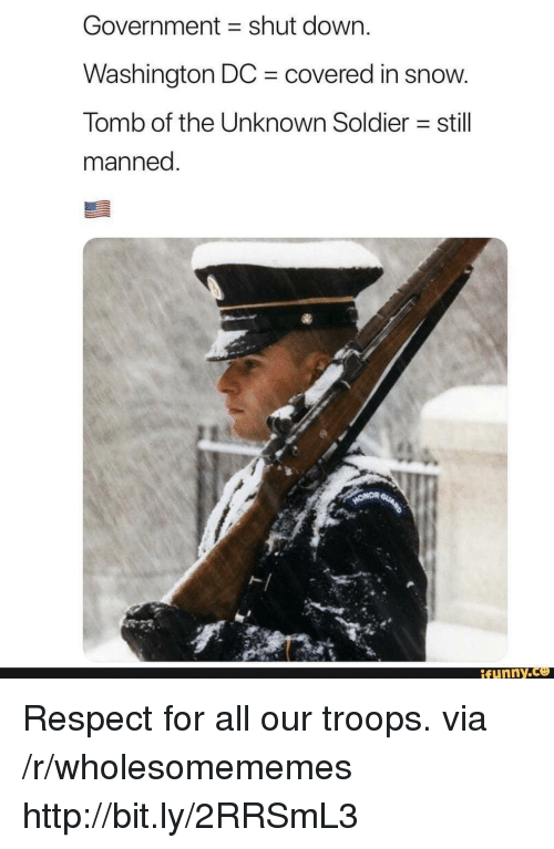Funny, Respect, and Http: Government shut down.  Washington DC covered in snow  Tomb of the Unknown Soldier still  manned  ト|  funny Respect for all our troops. via /r/wholesomememes http://bit.ly/2RRSmL3