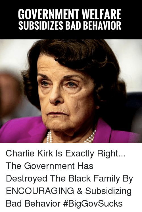 Bad, Charlie, and Family: GOVERNMENT WELFARE  SUBSIDIZES BAD BEHAVIOR Charlie Kirk Is Exactly Right... The Government Has Destroyed The Black Family By ENCOURAGING & Subsidizing Bad Behavior #BigGovSucks