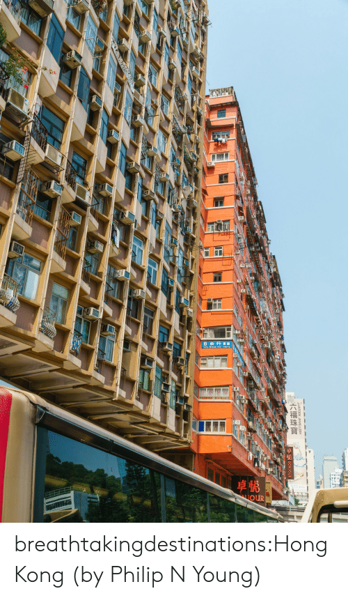 gow: GOW  自由行實館  LIOUR  LUKEOOK JEWELLERY  六福珠寶 breathtakingdestinations:Hong Kong (by Philip N Young)