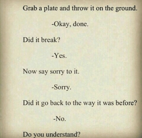 Sorry, Break, and Okay: Grab a plate and throw it on the ground.  -Okay, done.  Did it break?  Yes.  Now say sorry to it.  -Sorry  Did it go back to the way it was before?  No.  Do you understand?