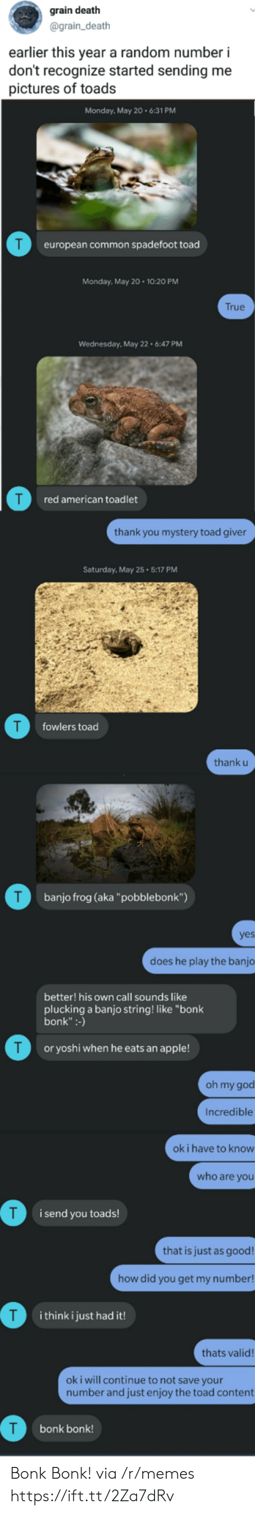 "Apple, God, and Memes: grain death  @grain_death  earlier this year a random number i  don't recognize started sending me  pictures of toads  Monday, May 20.6:31 PM  T  european common spadefoot toad  Monday, May 20 10:20 PM  True  Wednesday, May 22 6:47 PM  red american toadlet  thank you mystery toad giver  Saturday, May 25 5:17 PM  T  fowlers toad  thank u  T  banjo frog (aka""pobblebonk"")  yes  does he play the banjo  better! his own call sounds like  plucking a banjo string! like ""bonk  bonk"":-)  T  or yoshi when he eats an apple!  oh my god  Incredible  ok i have to know  who are you  i send you toads!  that is just as good!  how did you get my number!  T  i think i just had it!  thats valid!  oki will continue to not save your  number and just enjoy the toad content  bonk bonk! Bonk Bonk! via /r/memes https://ift.tt/2Za7dRv"