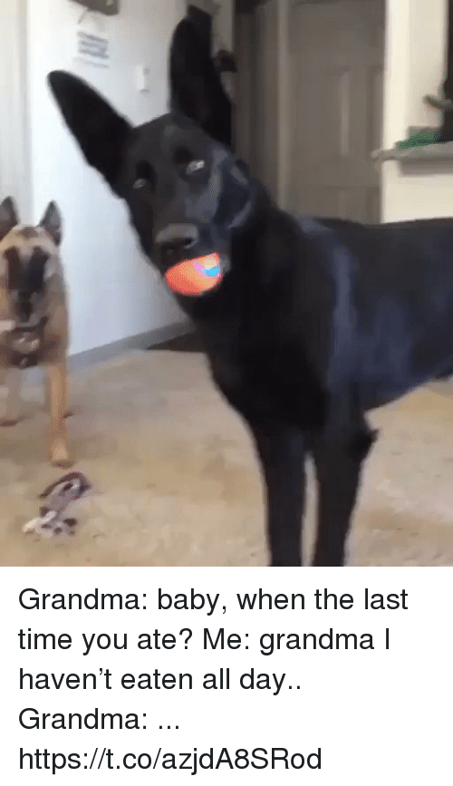 Funny, Grandma, and Time: Grandma: baby, when the last time you ate?  Me: grandma I haven't eaten all day..  Grandma: ... https://t.co/azjdA8SRod