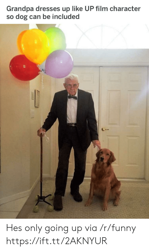 Funny, Grandpa, and Dresses: Grandpa dresses up like UP film character  so dog can be included Hes only going up via /r/funny https://ift.tt/2AKNYUR
