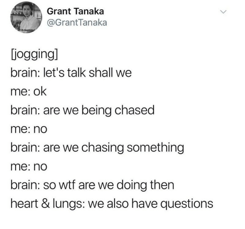 Being Chased: Grant Tanaka  @GrantTanaka  jogging]  brain: let's talk shall we  me: ok  brain: are we being chased  me: no  brain: are we chasing something  me: no  brain: so wtf are we doing then  heart & lungs: we also have questions