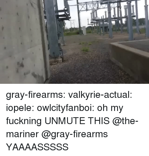 valkyrie: gray-firearms: valkyrie-actual:   iopele:  owlcityfanboi: oh my fuckning  UNMUTE THIS   @the-mariner @gray-firearms    YAAAASSSSS