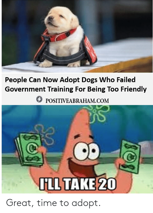 great: Great, time to adopt.
