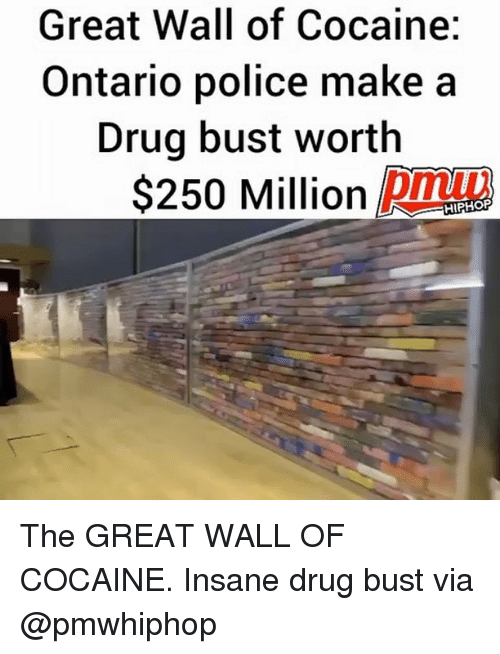 Drugs, Memes, and Police: Great Wall of Cocaine:  Ontario police make a  Drug bust worth  $250 Million Dmt  HIPHORP The GREAT WALL OF COCAINE. Insane drug bust via @pmwhiphop