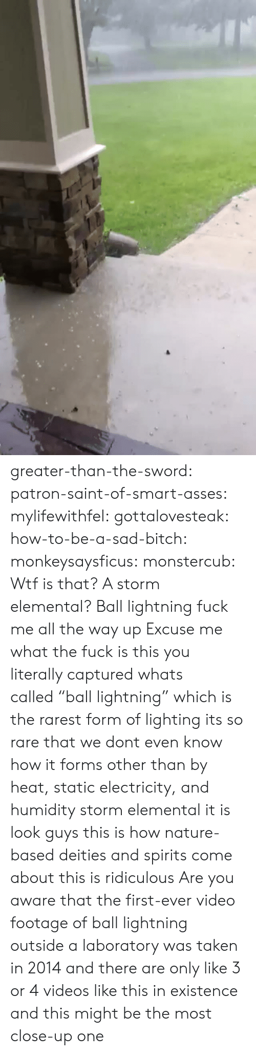 "Bitch, Taken, and Tumblr: greater-than-the-sword:  patron-saint-of-smart-asses:  mylifewithfel:  gottalovesteak:  how-to-be-a-sad-bitch:  monkeysaysficus:   monstercub: Wtf is that? A storm elemental?  Ball lightning fuck me all the way up   Excuse me what the fuck is this  you literally captured whats called ""ball lightning"" which is the rarest form of lighting its so rare that we dont even know how it forms other than by heat, static electricity, and humidity  storm elemental it is  look guys this is how nature-based deities and spirits come about this is ridiculous  Are you aware that the first-ever video footage of ball lightning outside a laboratory was taken in 2014 and there are only like 3 or 4 videos like this in existence and this might be the most close-up one"