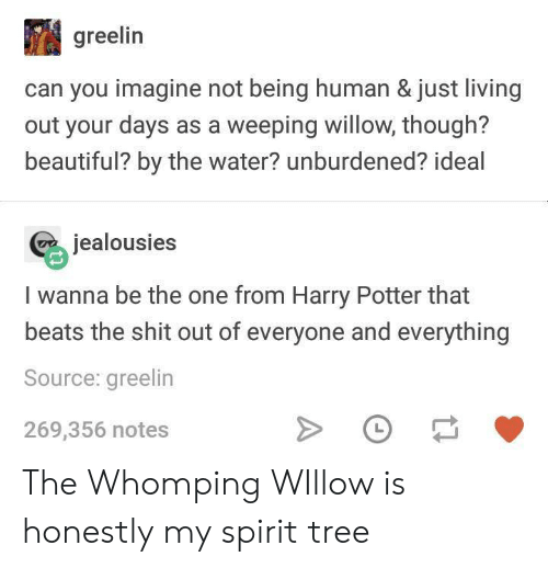 Beautiful, Harry Potter, and Shit: greelin  can you imagine not being human & just living  out your days as a weeping willow, though?  beautiful? by the water? unburdened? ideal  jealousies  I wanna be the one from Harry Potter that  beats the shit out of everyone and everything  Source: greelin  269,356 notes The Whomping WIllow is honestly my spirit tree