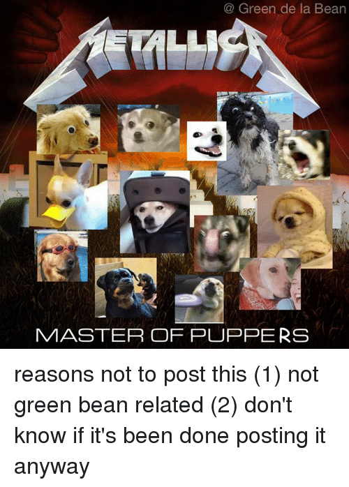 Dank, Masters, and 🤖: Green de la Bean  MASTER OF PUPPERS reasons not to post this  (1) not green bean related  (2) don't know if it's been done  posting it anyway
