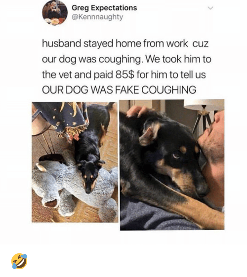 Dank, Fake, and Work: Greg Expectations  @Kennnaughty  husband stayed home from work cuz  our dog was coughing. We took him to  the vet and paid 85$ for him to tell us  OUR DOG WAS FAKE COUGHING 🤣