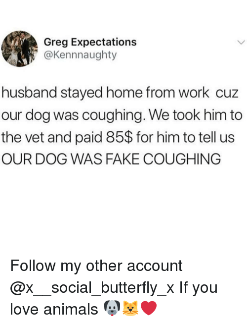 Animals, Fake, and Love: Greg Expectations  @Kennnaughty  husband stayed home from work cuz  our dog was coughing. We took him to  the vet and paid 85$ for him to tell us  OUR DOG WAS FAKE COUGHING Follow my other account @x__social_butterfly_x If you love animals 🐶🐱❤