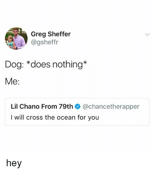 Cross, Ocean, and Dog: Greg Sheffer  @gsheffr  Dog: *does nothing'*  Me:  Lil Chano From 79th @chancetherapper  I will cross the ocean for you hey
