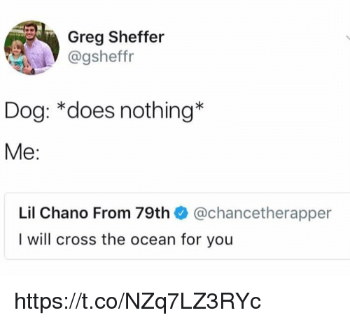 Memes, Cross, and Ocean: Greg Sheffer  @gsheffr  Dog: *does nothing*  Me:  Lil Chano From 79th @chancetherapper  I will cross the ocean for you https://t.co/NZq7LZ3RYc