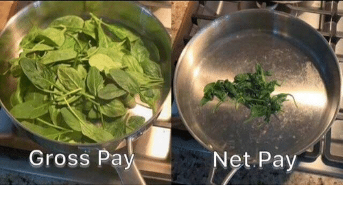 Dank, 🤖, and Gross: Gross Pay