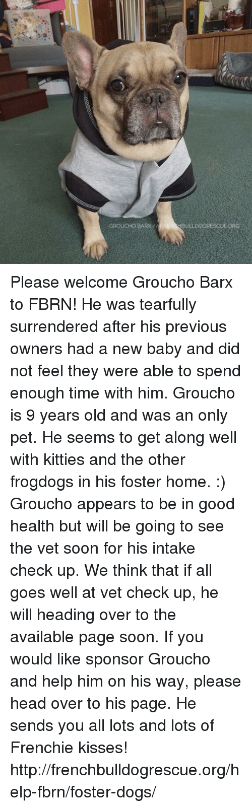 Memes, 🤖, and Fosters: GROUCHOBARx  BULLDOGRES GEORG Please welcome Groucho Barx to FBRN! He was tearfully surrendered after his previous owners had a new baby and did not feel they were able to spend enough time with him.   Groucho is 9 years old and was an only pet. He seems to get along well with kitties and the other frogdogs in his foster home. :)  Groucho appears to be in good health but will be going to see the vet soon for his intake check up. We think that if all goes well at vet check up, he will heading over to the available page soon. If you would like sponsor Groucho and help him on his way, please head over to his page. He sends you all lots and lots of Frenchie kisses!  http://frenchbulldogrescue.org/help-fbrn/foster-dogs/
