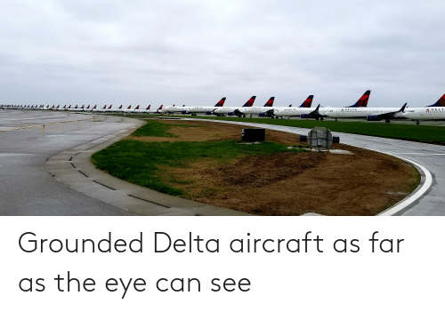 grounded: Grounded Delta aircraft as far as the eye can see