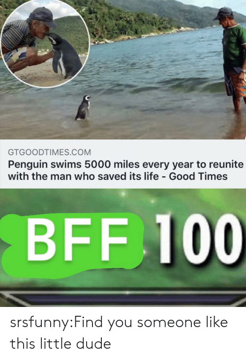 good times: GTGOODTIMES.COM  Penguin swims 5000 miles every year to reunite  with the man who saved its life - Good Times  BFF 100 srsfunny:Find you someone like this little dude