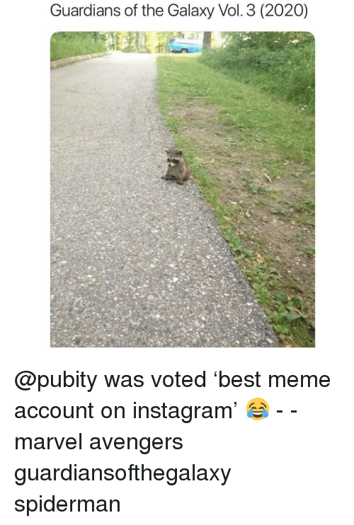 Instagram, Meme, and Memes: Guardians of the Galaxy Vol. 3 (2020) @pubity was voted 'best meme account on instagram' 😂 - - marvel avengers guardiansofthegalaxy spiderman
