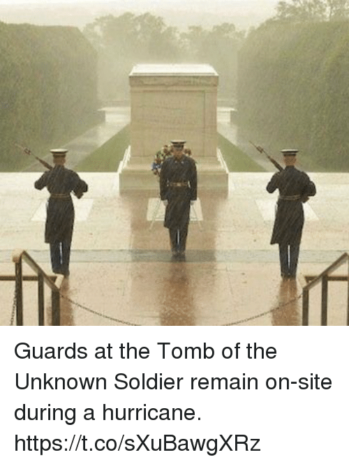 Memes, Hurricane, and 🤖: Guards at the Tomb of the Unknown Soldier remain on-site during a hurricane. https://t.co/sXuBawgXRz