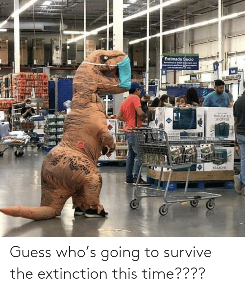 Guess: Guess who's going to survive the extinction this time????