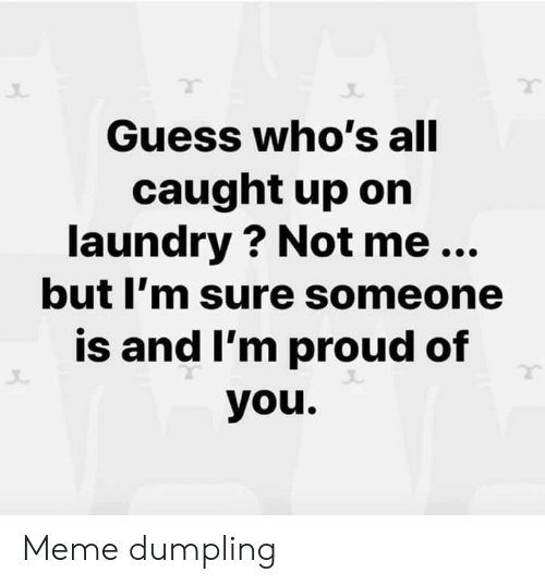 Im Proud: Guess who's all  caught up on  laundry ? Not me...  but I'm sure someone  is and I'm proud of  you. Meme dumpling