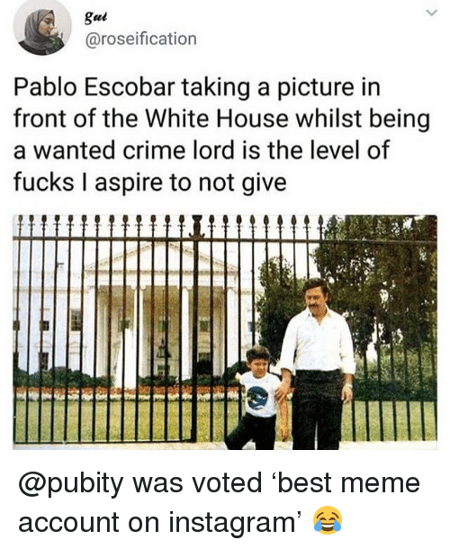 Crime, Instagram, and Meme: gui  @roseification  Pablo Escobar taking a picture in  front of the White House whilst being  a wanted crime lord is the level of  fucks I aspire to not give @pubity was voted 'best meme account on instagram' 😂