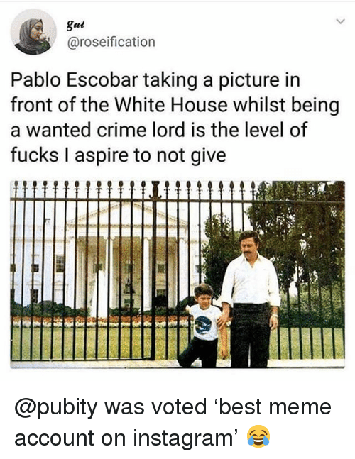 Crime, Funny, and Instagram: gul  @roseification  Pablo Escobar taking a picture in  front of the White House whilst being  a wanted crime lord is the level of  fucks I aspire to not give @pubity was voted 'best meme account on instagram' 😂