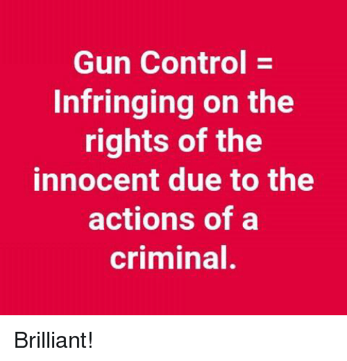 Memes, Control, and Brilliant: Gun Control -  Infringing on the  rights of the  innocent due to the  actions of a  criminal Brilliant!