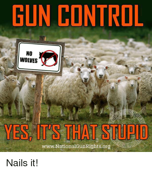 Memes, Control, and Nails: GUN CONTROL  NO  WOLVES  YES, IT'S THAT STUPID  www.NationalGun Rights.org Nails it!