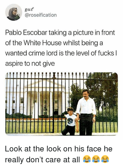 Crime, Funny, and Pablo Escobar: gut  @roseification  Pablo Escobar taking a picture in front  of the White House whilst being a  wanted crime lord is the level of fucks l  aspire to not give Look at the look on his face he really don't care at all 😂😂😂