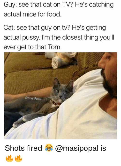 Shot Fired: Guy: see that cat on TV? He's catching  actual mice for food  Cat: see that guy on tv? He's getting  actual pussy. I'm the closest thing you'll  ever get to that Tom  @Masi Popal Shots fired 😂 @masipopal is 🔥🔥
