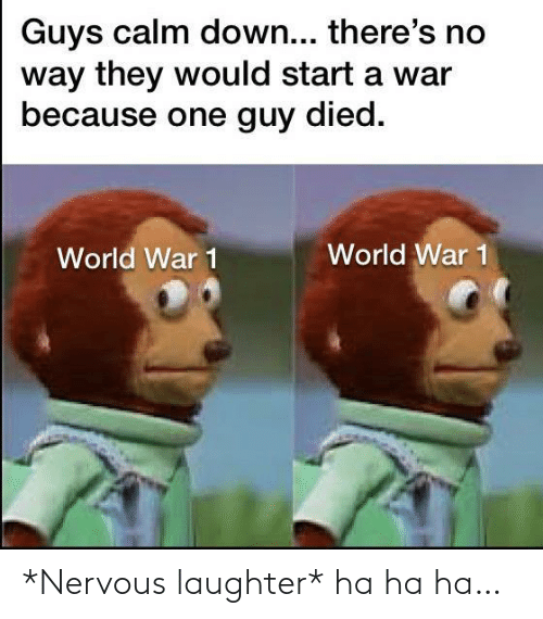 world war: Guys calm down... there's no  way they would start a war  because one guy died.  World War 1  World War 1 *Nervous laughter* ha ha ha…